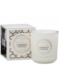 VOLUSPA  Gardenia Colonia 100hr Candle
